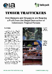 Timber_Traffickers