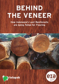 Behind the veneer